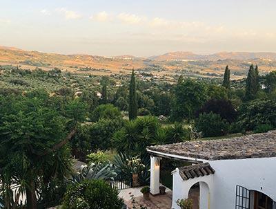 Le vin Espagnol a Pinoso